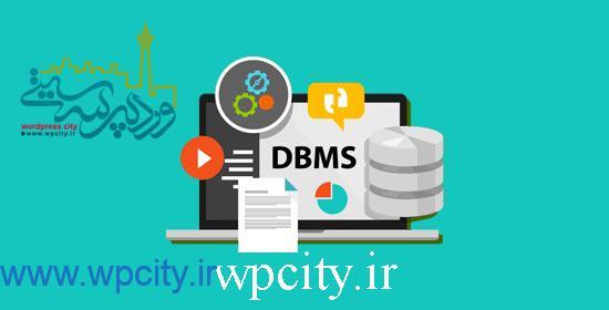 بهینه سازی پایگاه داده وردپرس